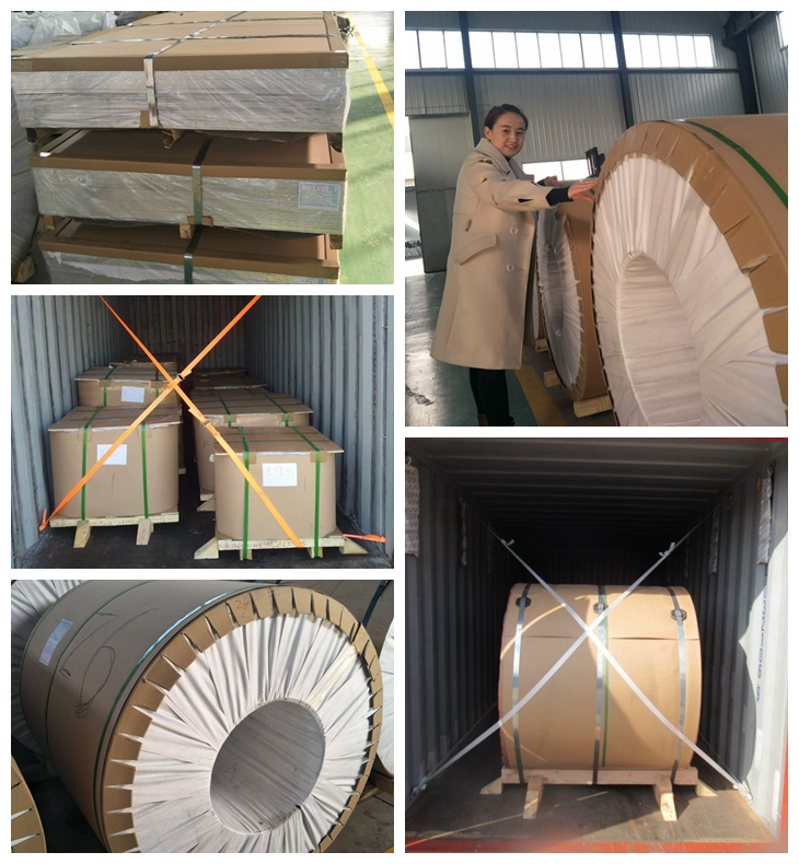 Roofing application color coated 3003 h14 aluminum coil for can body