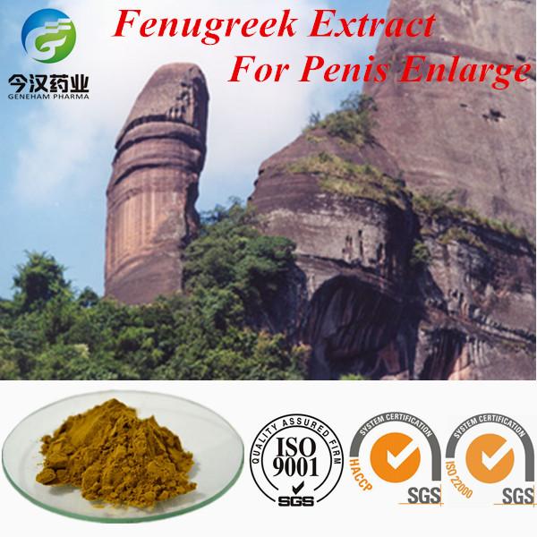 Natural And Common Fenugreek Seed Powder Herbal Penis Enlargement ...