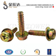 brass plated hex head sems machine screws with rubber washer (with ISO card)
