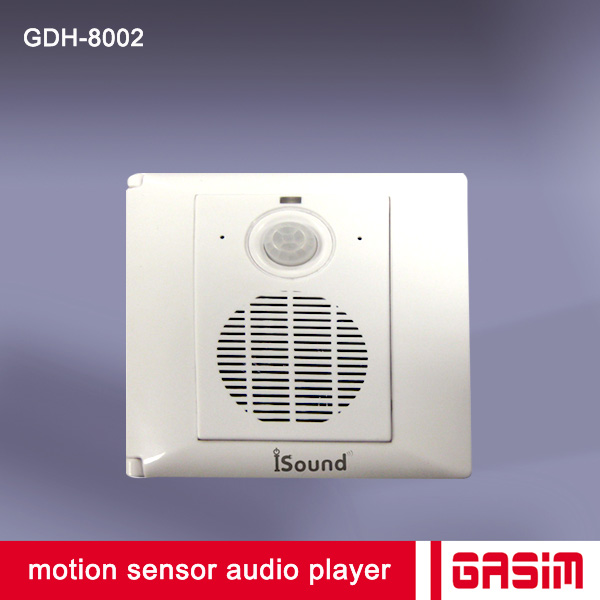 Powerful Pir Motion Sensor Audio Player