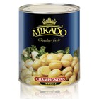 Fancy quality canned mushrooms champignon whole in brine