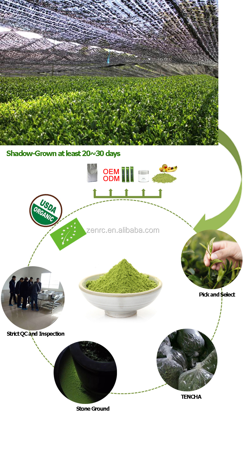 Most Popular Regular Early Spring Matcha for Food Baking