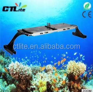 2 Years Warranty 3 Watt Led Reef Tank Lighting Artificial Fish ...