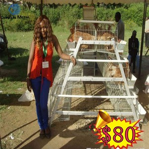 Low price automatic chicken cagechicken cage for sale in philippines