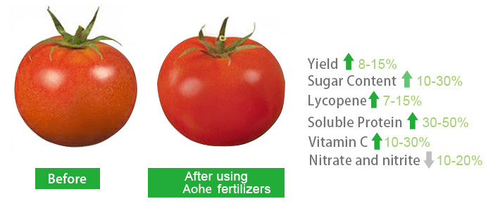 Boric Powder amino acid/fertilizer/liquid fertilizer/amino acid liquid fertilizer