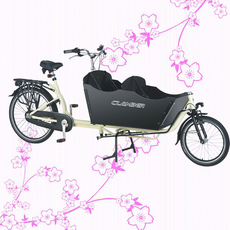 New Style 250W Front Loading Dutch Cargo Bicycle 2 Wheel Family Use Cargo Bike Electric