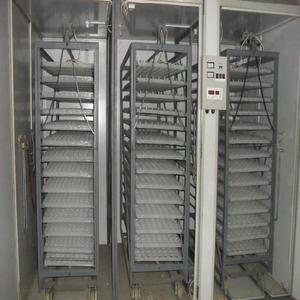 largest egg incubator for poultry
