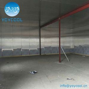 China universal cold storage project and used storage sheds for sale