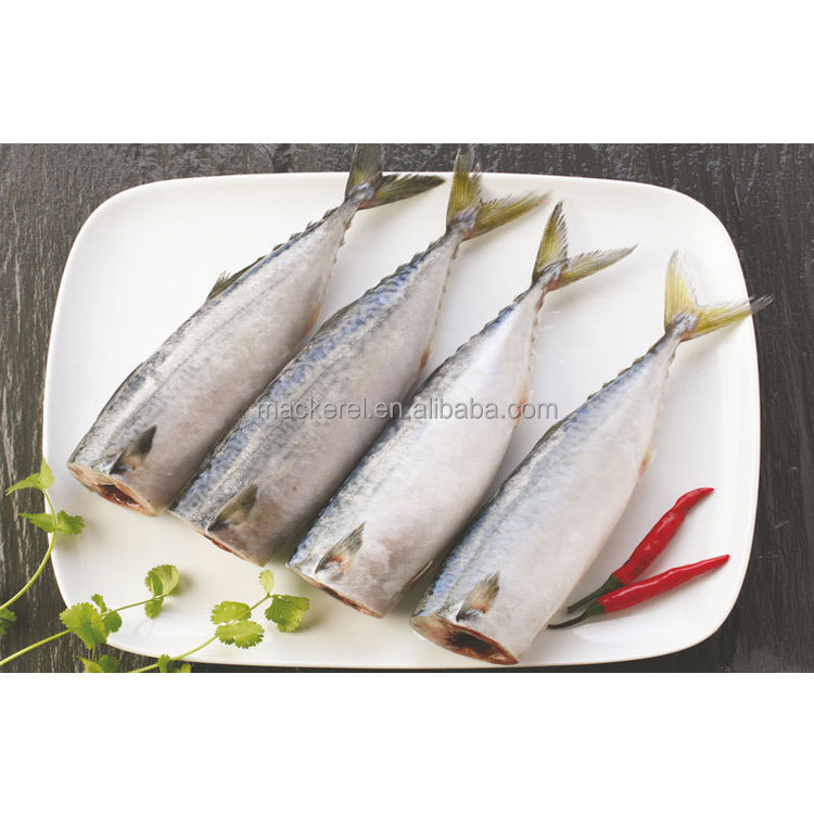 2017 wholesale delicious Good quality high cost performance importers frozen seafood