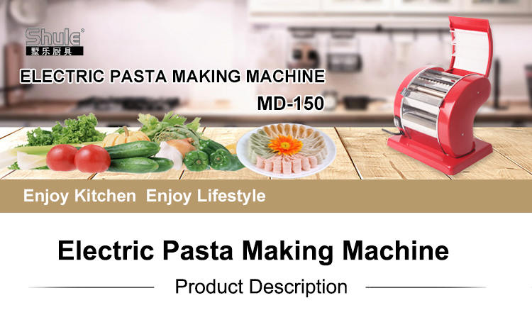 Hot Sale Stainless Steel Electric Homemade Fresh Pasta Making machine