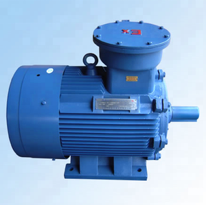 Marine Industrial Explosion-proof Electric Motor