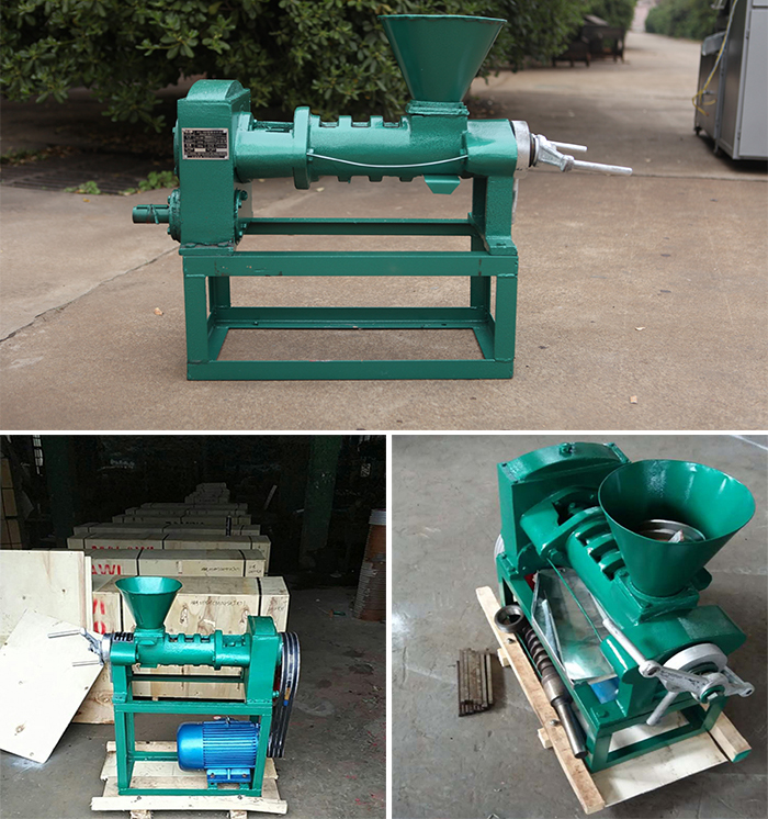 2019 hot sale 6yl-68 moringa seed oil expeller/edible oil extraction machine