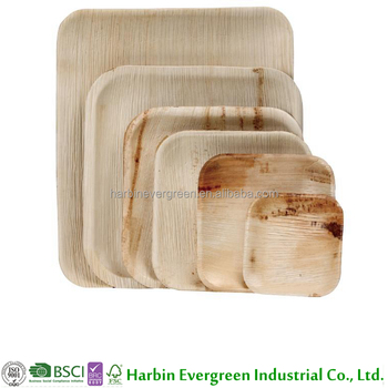 Eco ware disposable biodegradable dinnerware palm leaf plates  sc 1 st  Alibaba & Eco Ware Disposable Biodegradable Dinnerware Palm Leaf Plates - Buy ...
