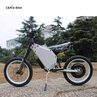 2018 newest electric bike steel frame for brushless gealress hub motor 3000w/ 5000w