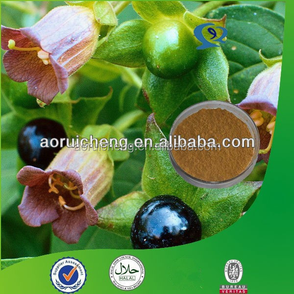 Natural Belladonna Leaf Extract