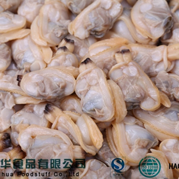 Frozen Seafood Chinese Trading Companies Clam Meat Of Shellfish - Buy Clam  Meat Of Shellfish,Chinese Trading Companies Clam Meat,Frozen Seafood Clam