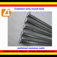 Common iron nails decorative nail heads for furniture