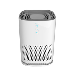 OEM/ODM HEPA Anion Air Purifier, Air Refresher, Air Cleaner with LED Indicator light