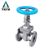TKFM alibaba china suppliers high quality API standard extension spindle for dn 50 gate valve butt-weld
