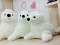 Gift for baby 1pc 35cm creative Aquarium sea world animal white sea lions seals plush doll