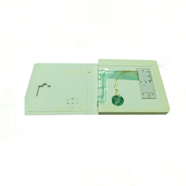 Pre-recorded Mini Sound Speaking Book with PET Film Module