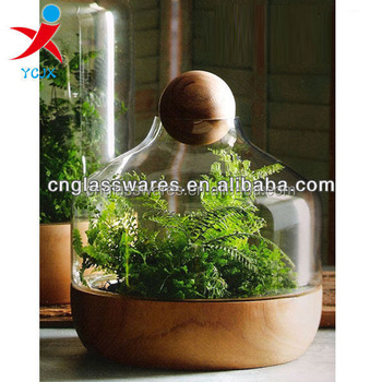 Hand Made Glass Terrarium Vase With Wood Base Buy Glass Vases