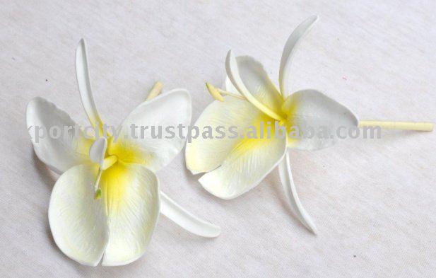 Hawaiian White Ginger Foam Flower Tk Wg1 Buy Foam Flowers