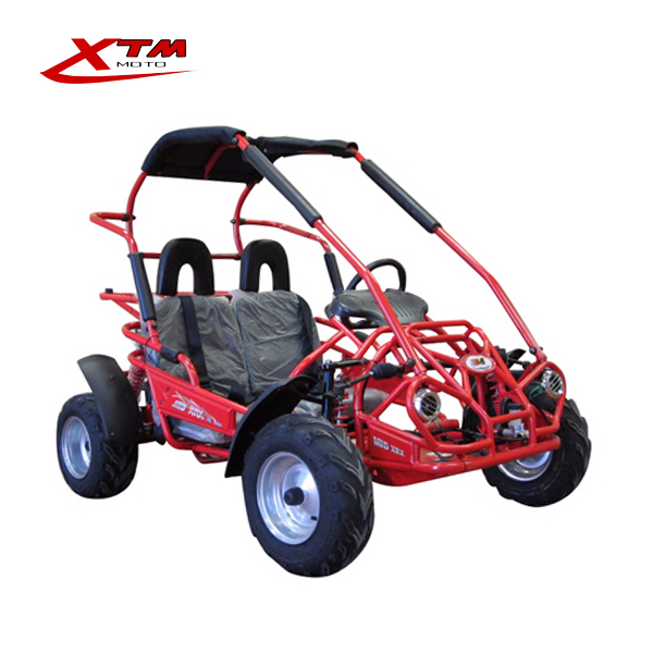 Youth teenager MID 80 200cc off road buggy go kart