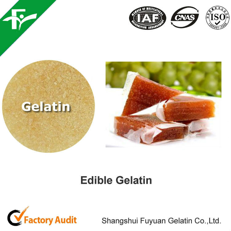 Supply Best Price Food Grade Gelatin For Jelly Cup offer free samples