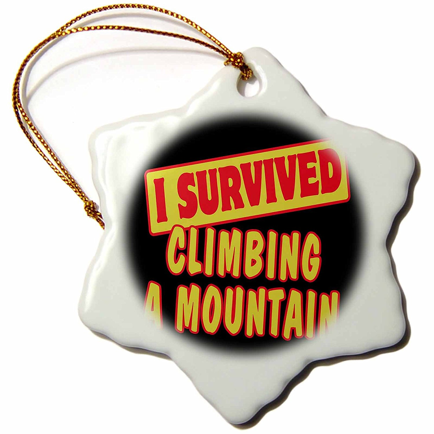 Dooni Designs Survive Sayings - I Survived Climbing A Mountain Survial Pride And Humor Design - 3 inch Snowflake Porcelain Ornament (orn_117842_1)