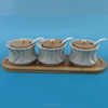 Modern design ceramic condiment set with stand for kitchen