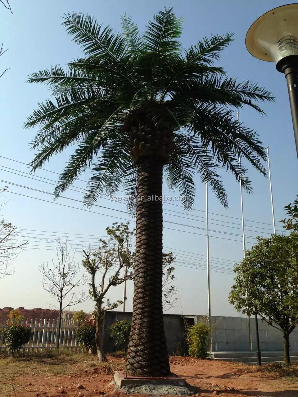 pas cher grand palmier artificiel arbre décoratif grands arbres