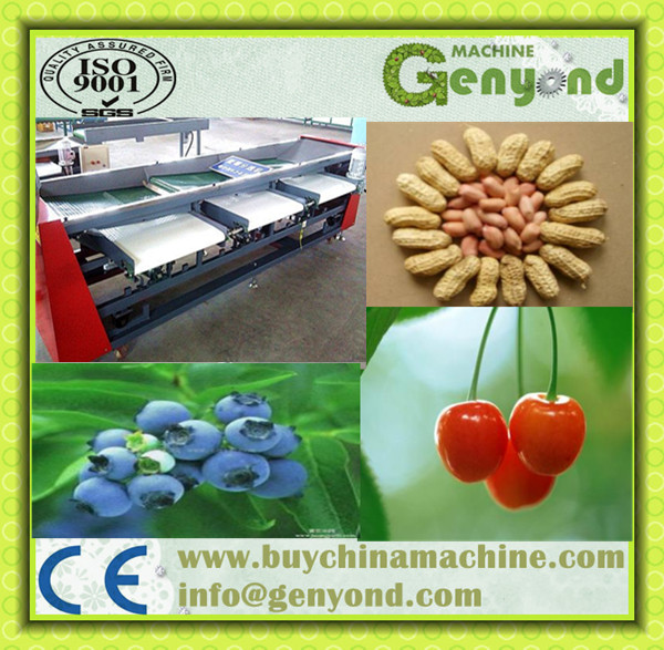 superior quality high efficiency tomato sorting machine