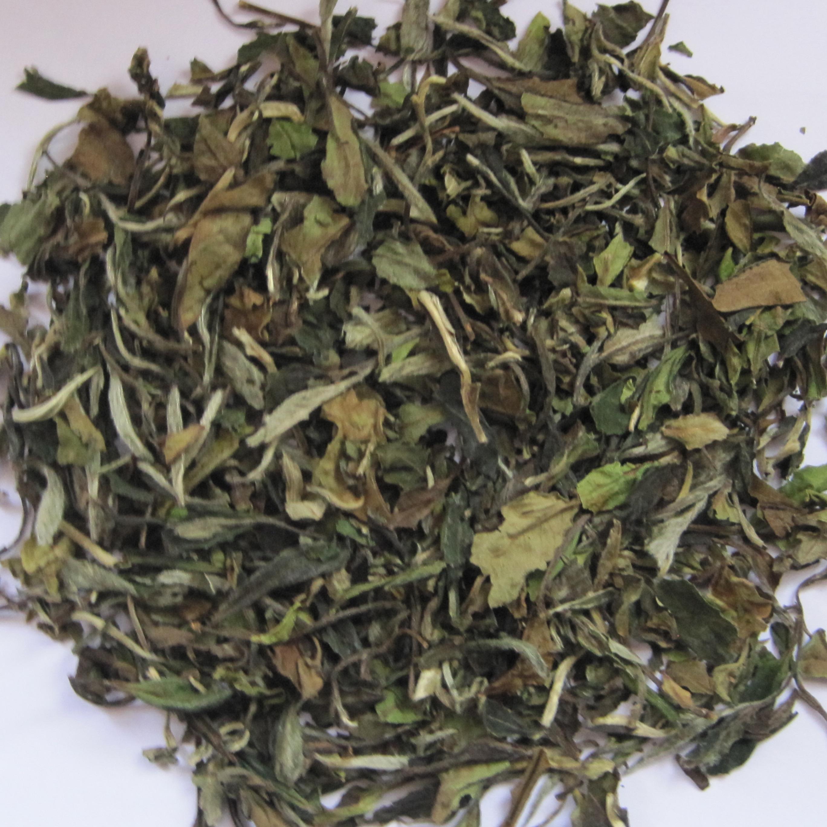 Chinese EU compliant White tea beat price Whits Peony 01top garde Fuding white tea - 4uTea   4uTea.com