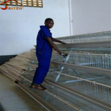 chicken cage, laying battery hens cage, poultry farming equipment