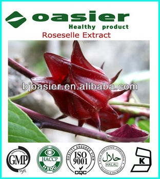 GMP Manufacture Supply Rose Eggplant Extract Powder