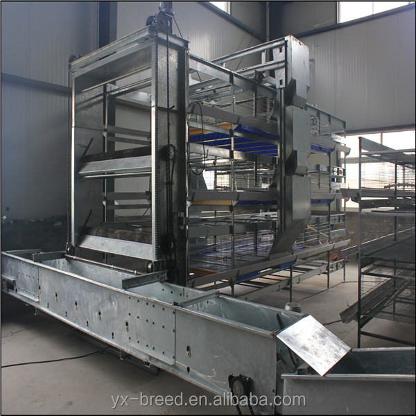 Automatic Meat Chicken Broiler Cage System Good Price