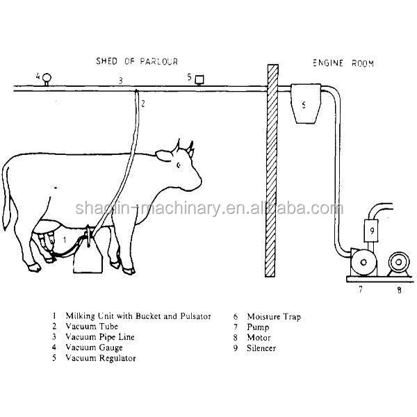 Low Noise Milking Machinepenis Milk Machines With High Milk