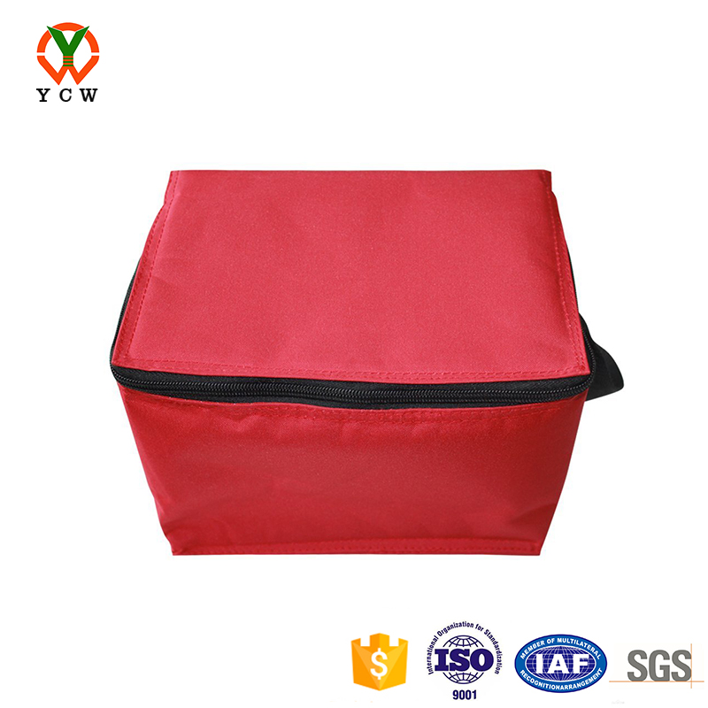 Washable food safe lining cooler bag friendly to users for camping