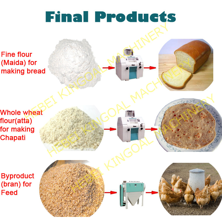 FREE INFO 58 WHEAT FLOUR MILLING PROCESS DOWNLOAD PDF DOC ZIP