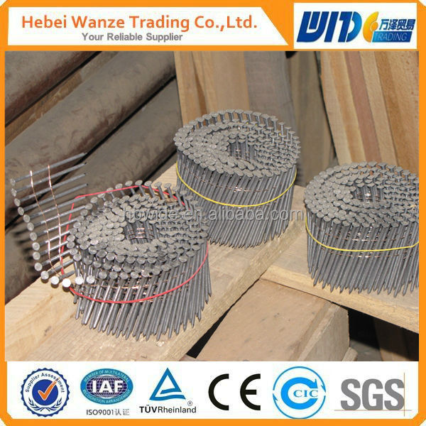 nail coil/1 1 4 coil roofing nails/plastic collated coil nails