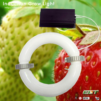 2014 Best Selling Induction Plant Grow Lamps And Vertical Led Grow ...