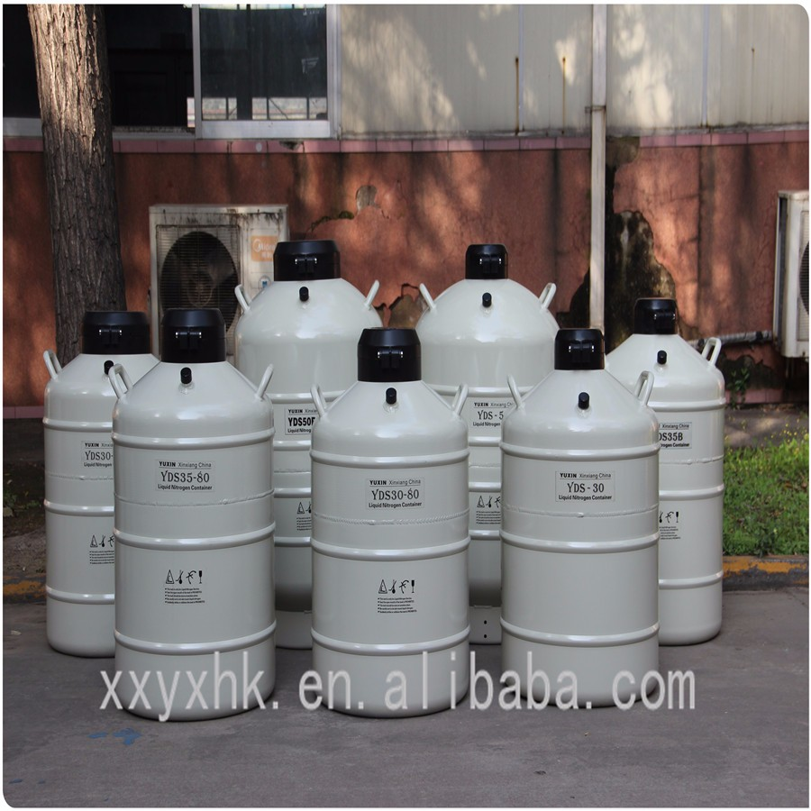 10L small capacity cryogenic liquid nitrogen tank in pressure vessel