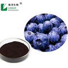 High Quality Nature Blueberry Pterostilbene Anthocyanins Super BlueberryJuice powder