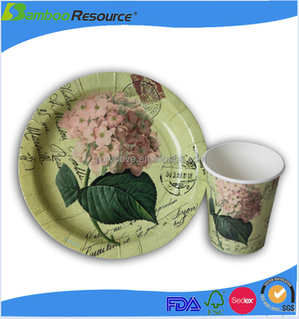 High qualitly disposable cup paper plate manufacturing process  sc 1 st  Alibaba & High Qualitly Disposable Cup Paper Plate Manufacturing Process - Buy ...