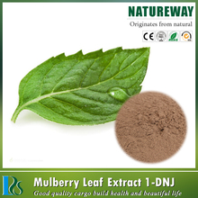 High quality pure mulberry 15% anthocyanidins extract,mulberry bark extract powder