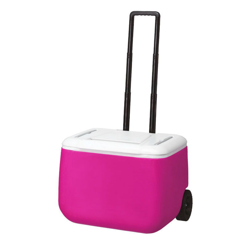 Hard case Plastic trolley Cooler bag box, wheeled hardside Insulated ice box,roller Ice Cooler box rigid Refrigerated case