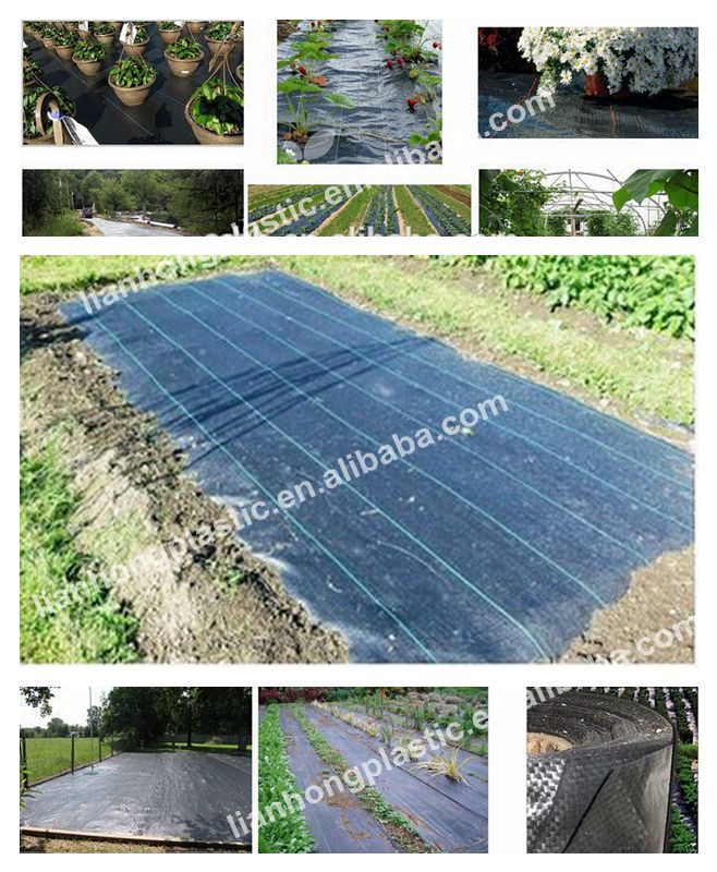 pe woven black fabric hdpe weed barrier landscape fabric plastic ground cover roll - Weed Barrier