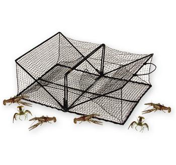 Crayfish Trap Diagram - Enthusiast Wiring Diagrams •