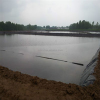 Chinese factory top quality hdpe pond liner